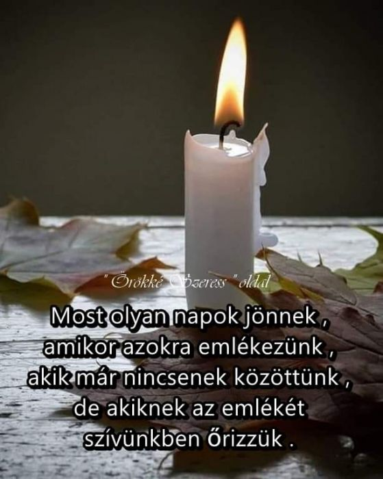 FB_IMG_1603990646909