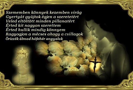 www.tvn.hu_ba94bb1978837fd85fcbf7216c78a73c