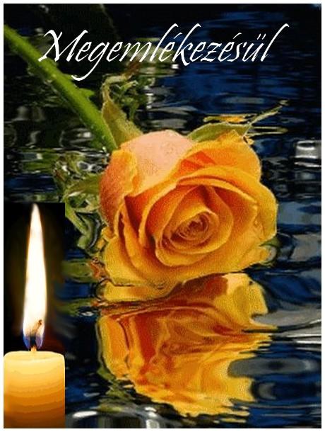 rózsa gyertya